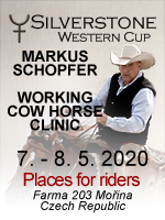 Markus Schopfer - Working Cow Horse Clinic