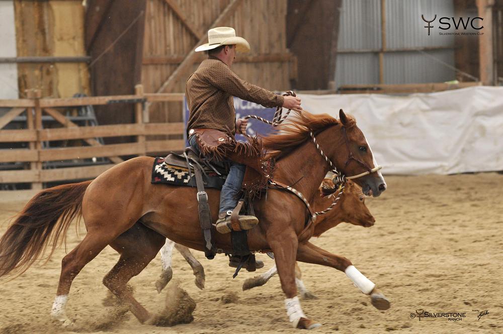 Working Cow Horse Hackamore open Reserve Champion CR Sassy Little Legend a Peter Kun
