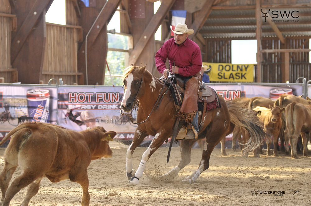 Working Cow Horse Herd Work Open All Ages Grand Champion Smoking Cowboy SB a Tomas Barta