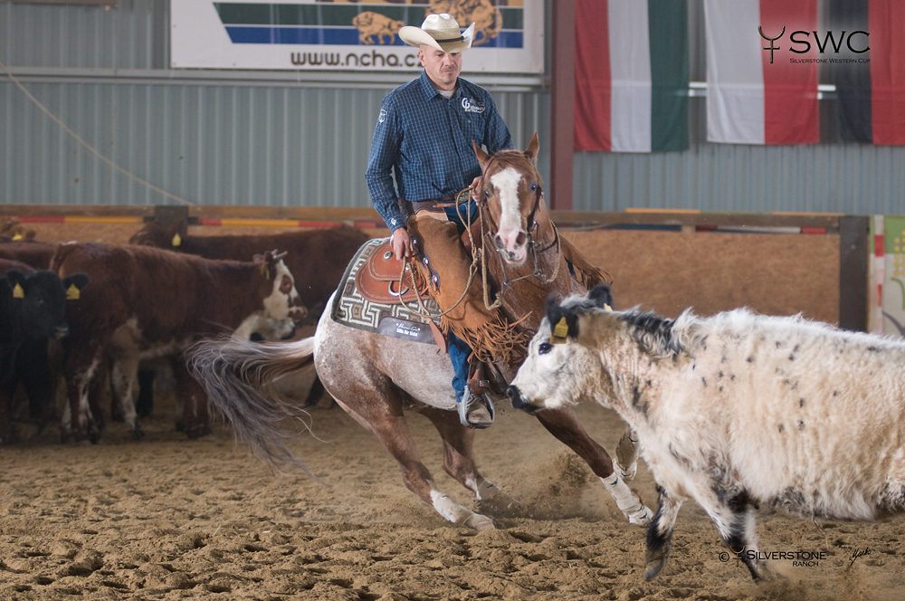 Working Cow Horse Herd Work Open All Ages Reserve Champion MA Starfighter a Václav Vacík