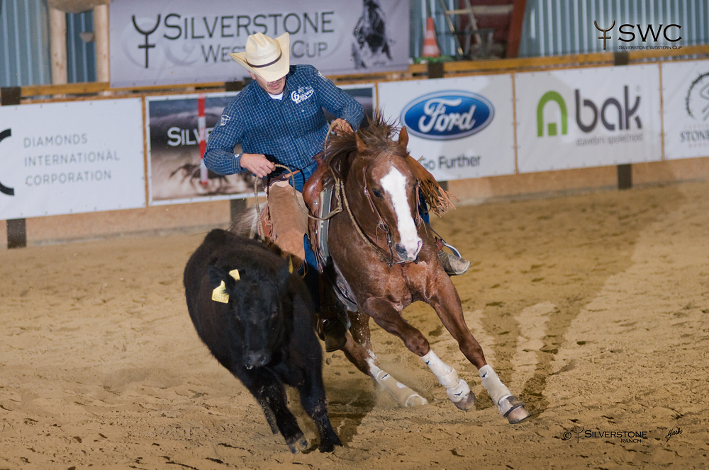 Working Cow Horse High Point Champion MA Starfighter a Václav Vacík