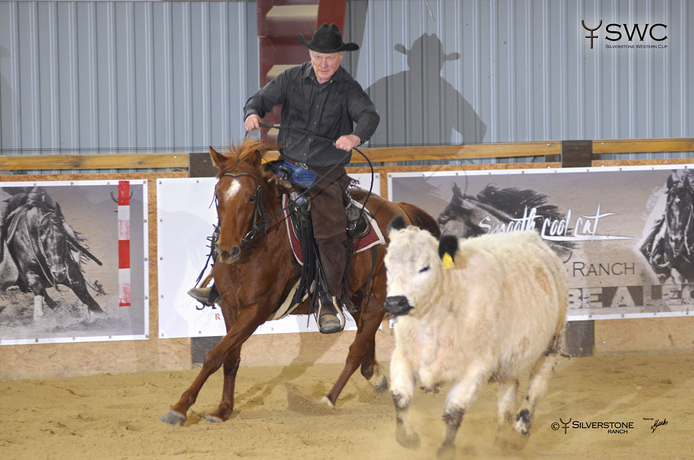 Working Cow Horse Novice horse Non-Pro Reserve Champion Holywood Chex a Václav Pubrdle