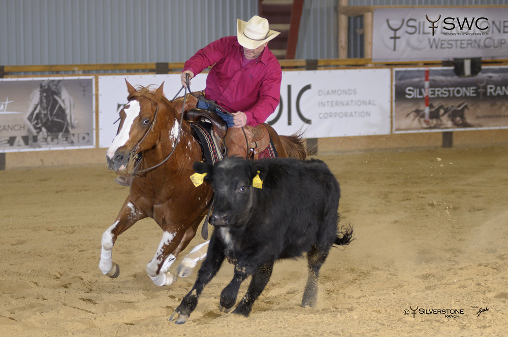 Working Cow Horse Open Bridle Grand Champion Smoking Cowboy SB a Tomas Barta